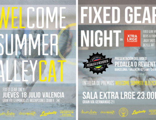"Welcome summer ""Alleycat"""